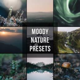 Moody Nature Lightroom Preset Set